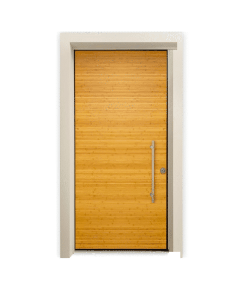 Security Entry Door Orinoco