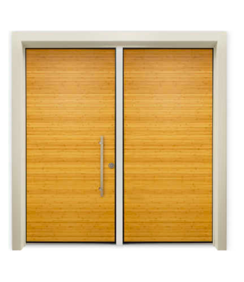 Security Entry Door Orinoco